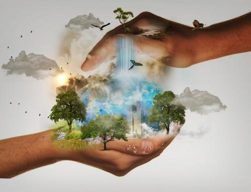 Skoro sto odsto ispitanih smatra važnim edukaciju o zaštiti voda i biodiverziteta