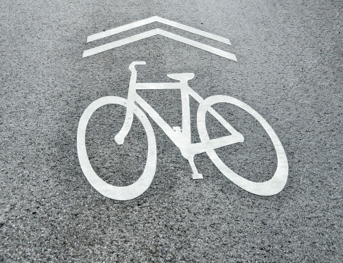 Tender for Construction of an asphalted Foot  Path and Bicycle Lane Around Lake Palic is Announced