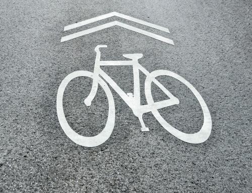 Meghirdették a Palicsi-tó körüli gyalogút és kerékpárút kiaszfaltozásáról szóló pályázatot