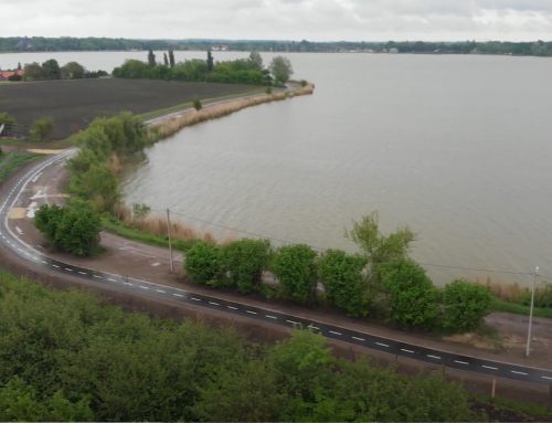 Bicycle-pedestrian path on Palic shore finalised