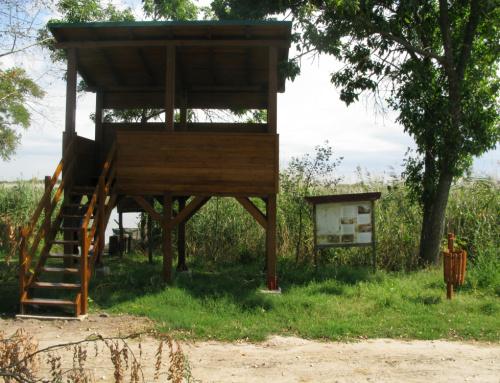 Postavljena odmorišta i kule za posmatranje ptica na Paliću i Ludašu